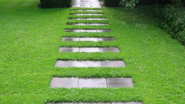 Amazing Stone Pathways Steal Show