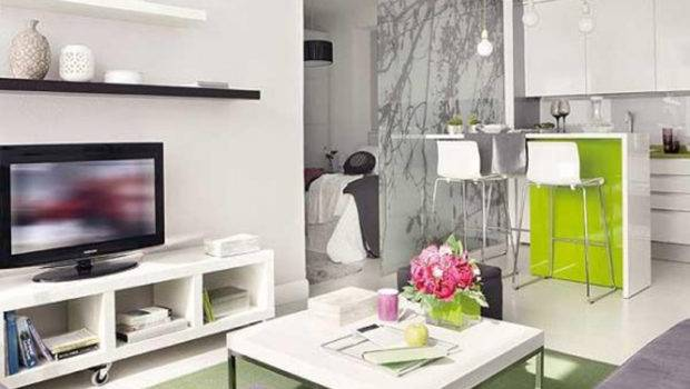 Apartment Decorate Small Living Design Ideas