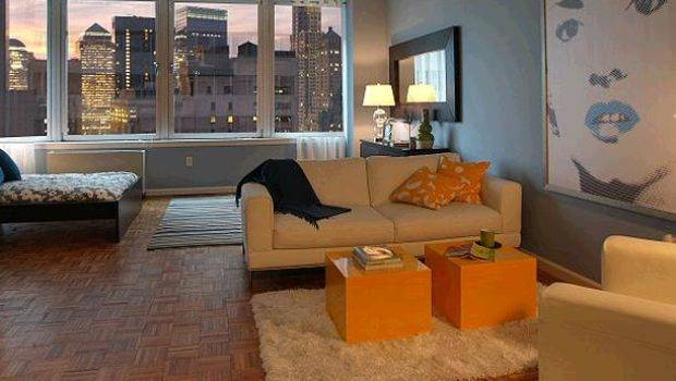 Apartment Small Space Condo Living Room Design