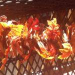 Autumn Lighted Rag Swag Garland Feet Long Nancianne
