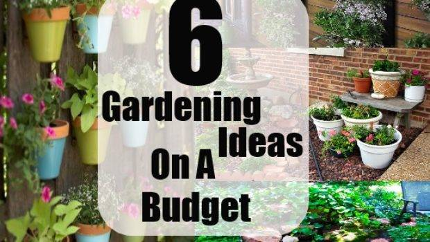 Awesome Gardening Ideas Budget Small Garden