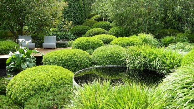 Backyard Landscaping Ideas Landscape Modern Small Garden Designs