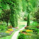 Beautiful Flower Garden Amazing