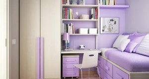 Bedroom Designs Closet Ideas Small Bedrooms Design