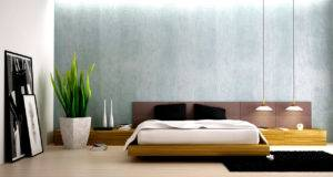 Bedroom Designs Men Design Decor Interior