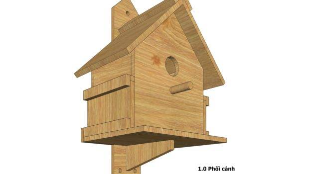 Bird House Design Build