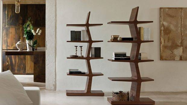 Bookshelves Trendy Modern Unleash Warmth Wood