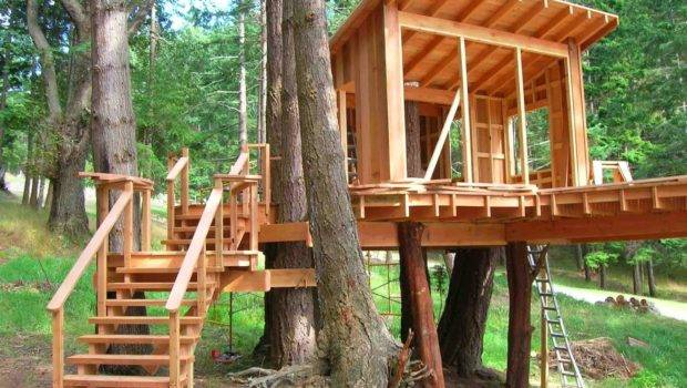 Build Simple But Cool Tree House