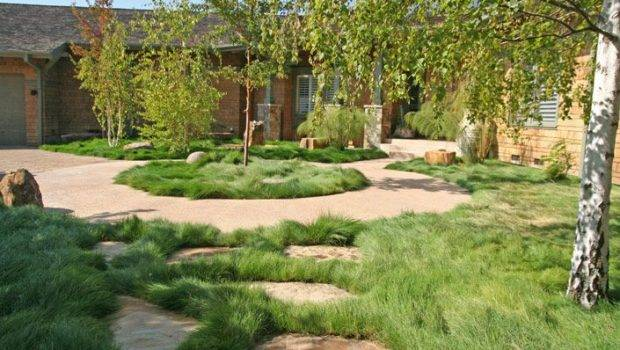 Building Ideas Backyard Landscaping Grass