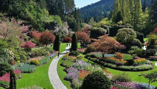 Butchart Gardens Victoria Day Trip City