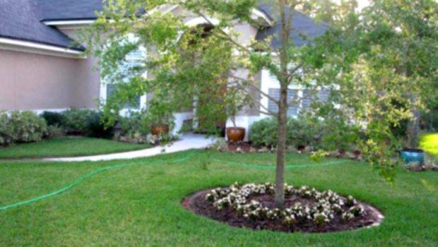 Cheap Easy Backyard Landscaping Ideas