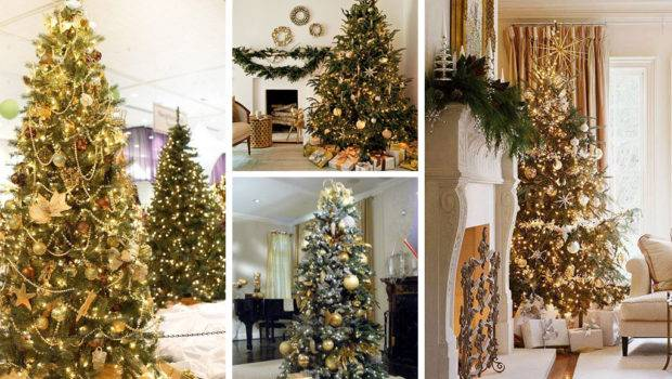Christmas Cheer All Through Year Decorated
