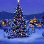 Christmas Tree Decoration Decorated Usually