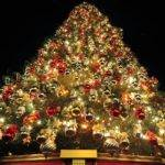Christmas Tree Ideas Red Gold Decor Outdoor