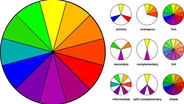 Color Wheel Clothing Combinations Fashion Real Women
