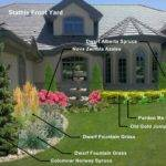 Colorado Front Yard Landscaping Ideas
