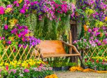 Colorful Garden Ideas Color Explosion