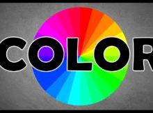 Colors Affect Your Mood Read Personalities