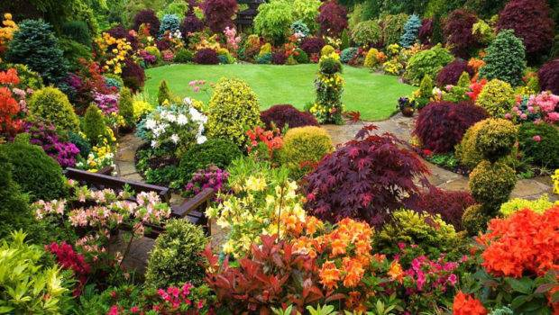 Combining Plants Beautiful Flower Garden Home Decor