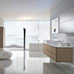 Contemporary Bathroom Design Ideas Interior