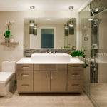 Contemporary Bathrooms Designs Remodeling Htrenovations
