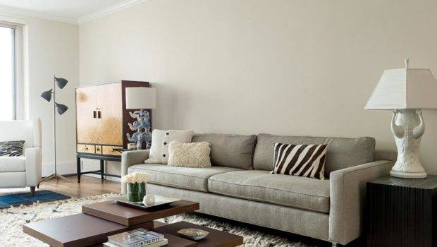 Contemporary Living Room Area Rugs Android Iphone