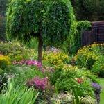 Creating Focal Point Your Garden Weasel