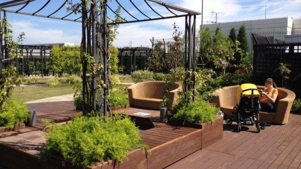 Day Trip Chantal Secret Rooftop Garden