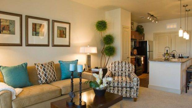 Decorate Your Apartment Living Room Latest