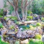 Drought Tolerant Landscaping Looks Lush Natural Green