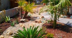 Drought Tolerant Landscaping Pacific Coast Home Solutions