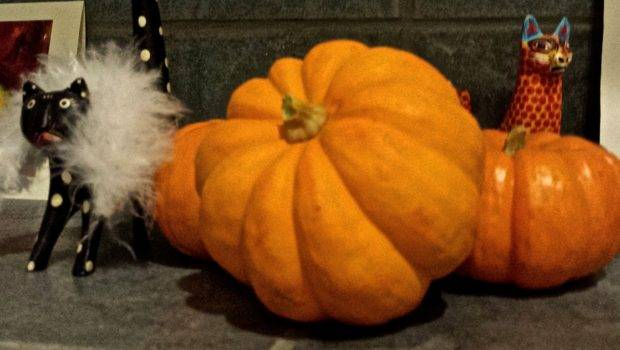 Easy Carving Required Pumpkin Decorations Woman