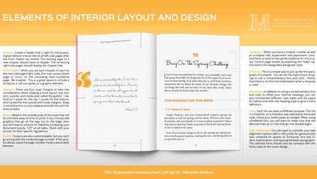 Elements Interior Design Layout Infographic