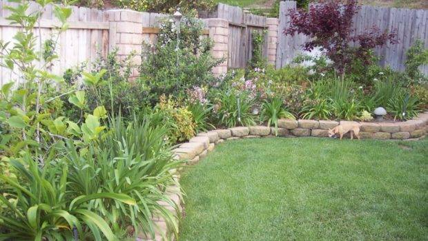 Evergreen May Simplest Backyard Landscaping Ideas Which