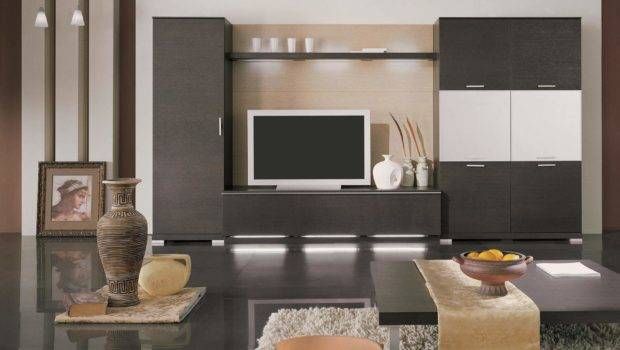 Extraordinary Small Living Room Ideas Wooden Cabinets