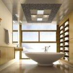 Extravagant Bathroom Ceiling Designs Inspired
