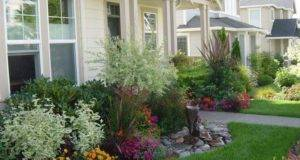 Flower Garden Ideas Small Yards Stunning Home Interior