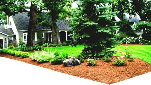 Front Yard Imposing Cheap Landscaping Ideas Cool