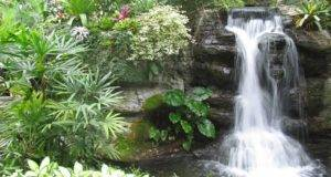 Garden Waterfall Design Enhances Beauty