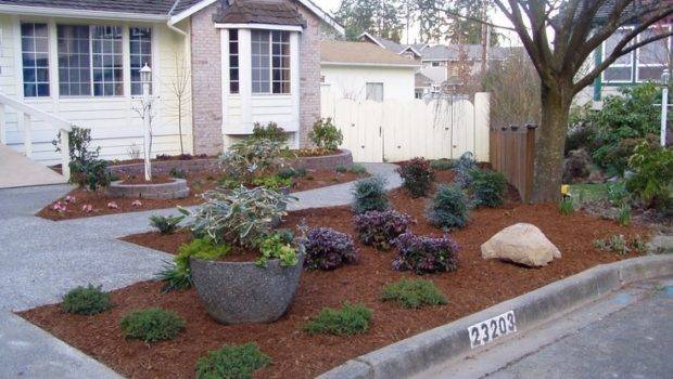 Grass Landscaping Pinterest