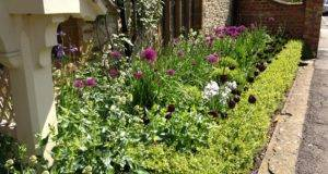 Great Ideas Small Front Garden Designs Oxford Design