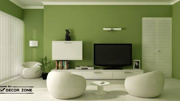 Green Small Living Room Paint Color Ideas