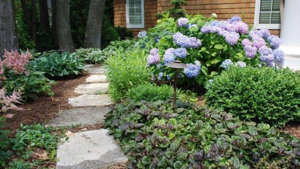 Ground Cover Plants Pinterest