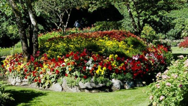 Happy Living Flower Bed Ideas Budget