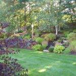 Hillside Garden Sloping Landscape Ideas Pinterest