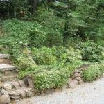 Hillside Landscaping Ideas Budget