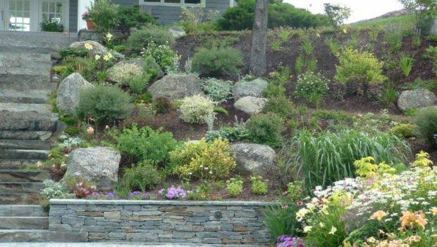 Hillside Landscaping Like Adds Lot Curb Appeal Home