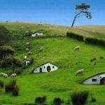 Hobbit Houses New Zealand Places Pinterest