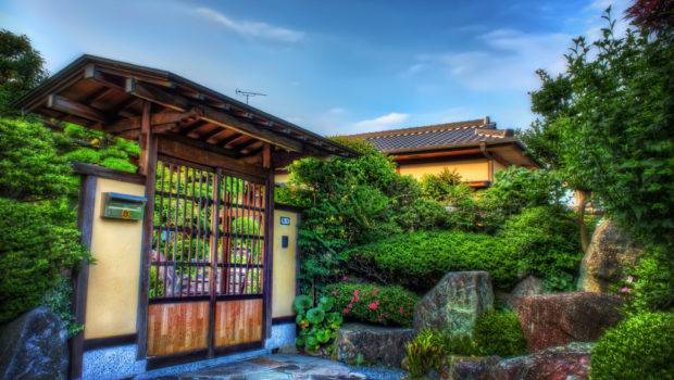House Garden Hedge Wall Japandave