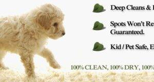 Instadry Carpet Tile Rug Cleaning Blog Plus Other Household